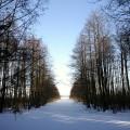 Išplaukimas į ežerą žiemą